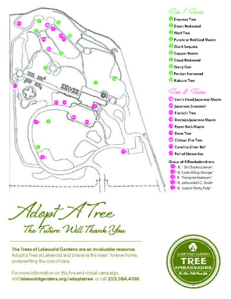aatc 2020_map of trees (1)