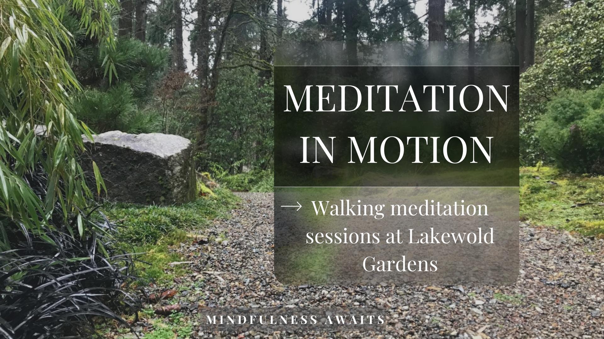 Meditation in Motion (1)