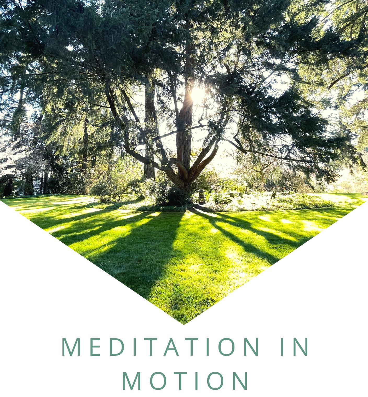 Meditation in Motion Booklet (1)